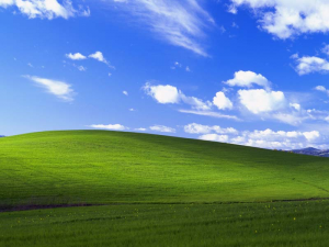 Bliss - Windows XP Wallpaper